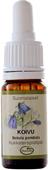 Kuva tuotteesta Frantsila Koivu kukkaterapiatipat