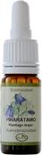 Kuva tuotteesta Frantsila Piharatamo kukkaterapiatipat