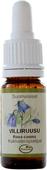 Kuva tuotteesta Frantsila Villiruusu kukkaterapiatipat