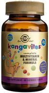 Kuva tuotteesta Solgar Kangavites Bouncing Berry, 60 tabl
