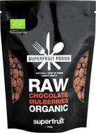 Kuva tuotteesta Superfruit Foods Luomu Raakasuklaamulperi