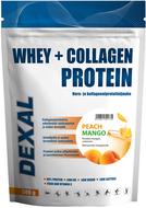 Kuva tuotteesta Dexal Whey+Collagen Proteiinijauhe Persikka-Mango